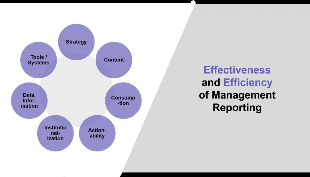 Next Gen Effectiveness and Efficiency of Management Reporting